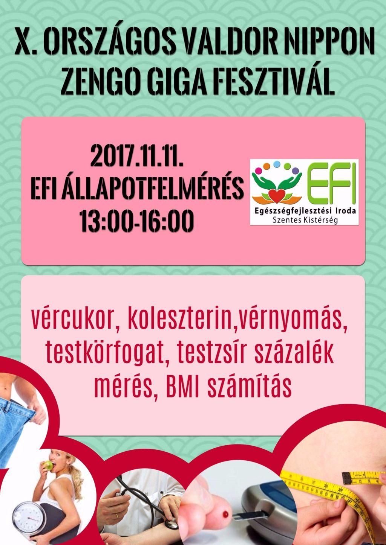 X. Országos Valdor Nippon Zengo Giga Fesztivál - 2017.11.11.